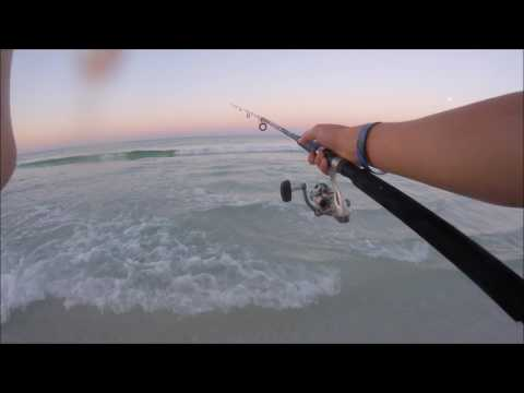 Surf Fishing In Destin Florida - NONSTOP ACTION