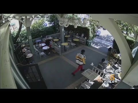 Caught On Camera: Berkeley Laptop Theft