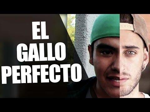 EL GALLO PERFECTO