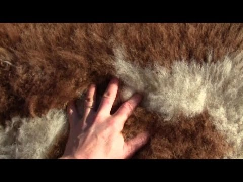 How To Make Your Own Un-Bleached Sheep Or Goat Skin Rug
