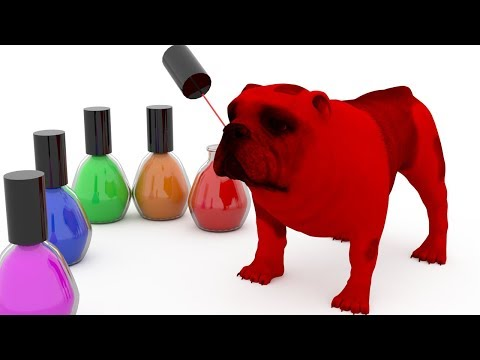 learn-colors-with-dogs-xylophone,-lipstick,-nail-polish-toys-|-learning-colors-for-kids-and-babies