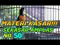 Murai Batu Medan Gacor Full Isian Murai Batu Bongkar Materi Shama Bird  Mp3 - Mp4 Download