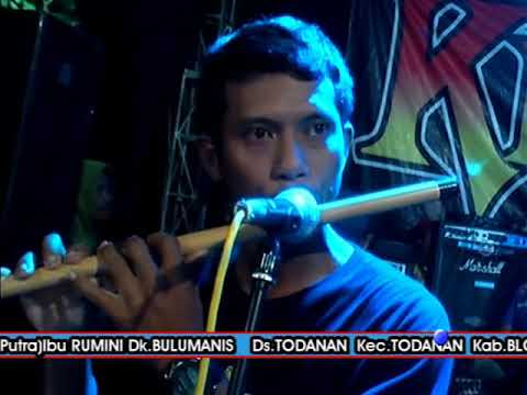 New King Star Live Todanan- GADIS BALIKU