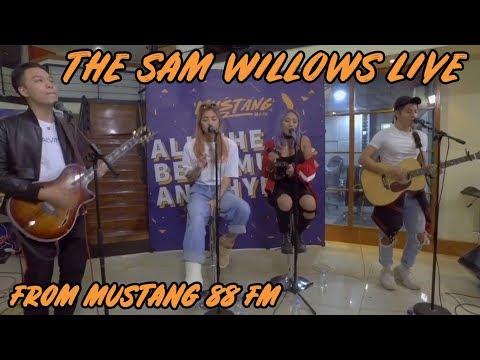 The Sam Willows - Papa Money (Live Performance)
