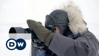 مصور الدببة القطبية | يوروماكس
