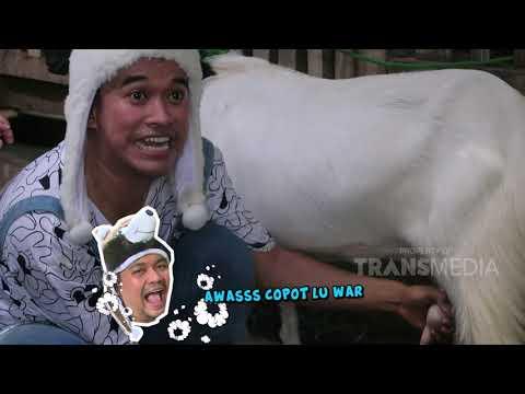 Ternyata Anwar Jago Meres Susu Sapi Guys!   BROWNIS JALAN JALAN (29/2/20)P2