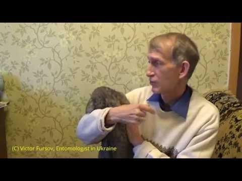 """Методические указания МУ -09 """"Организация и"""