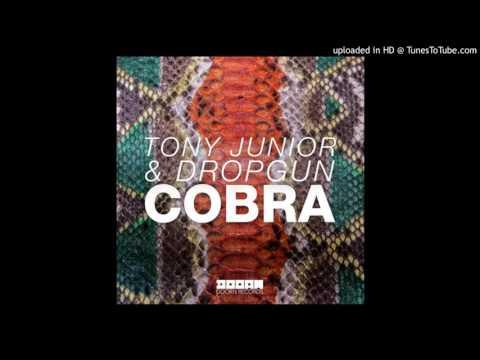 Tony Junior & Dropgun   Cobra Original Mix