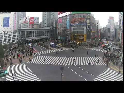 スクランブル ライブ 渋谷 映像 交差点 渋谷スクランブル交差点ビジョンとアドトラック広告を徹底比較!