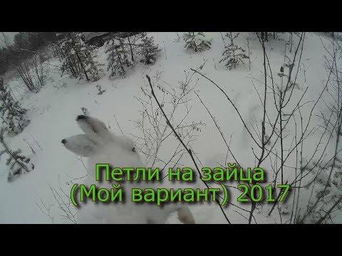 Охота на зайца зимой Принцип его заключается