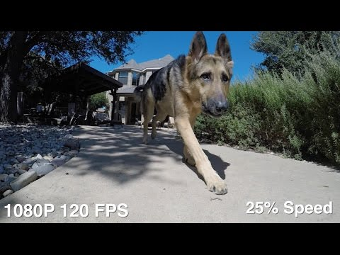 gopro 1080p 120fps vs 60fps