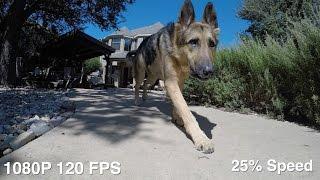 GoPro Hero 5 Black Slow Motion Testing - 1080p 120 FPS & 720p 240 FPS