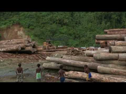 Stop Land Grabs in Papua New Guinea Trailer