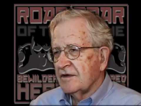Professor Noam Chomsky speaks about the Bewildered Herd