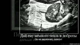 преданность.avi