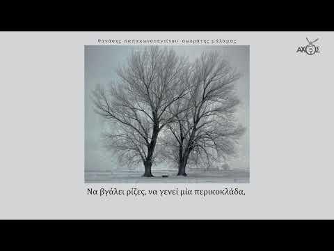 Σωκράτης Μάλαμας - Είχα τον κήπο της Εδέμ - Official Lyric Video