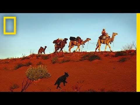 Alone Across the Outback | Nat Geo Live