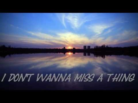 I Don't Wanna Miss A Thing Cover