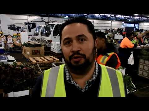 SYDNEY MARKETS ON THE MOVE WITH 15,000 FORKLIFTS