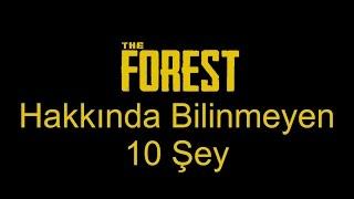 The Forest Hakkında Az Bilinen 10 Şey