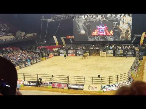 Bull breaks leg at Professional Bullriders Australia event in Adelaide