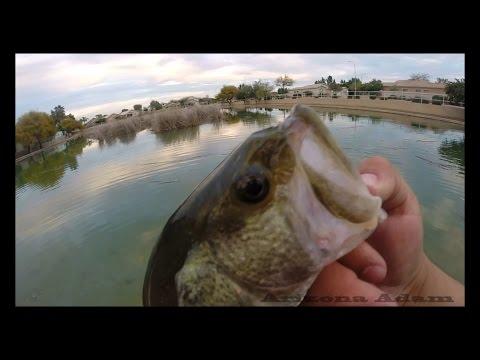 Arizona Urban Bass Fishing Episode 1
