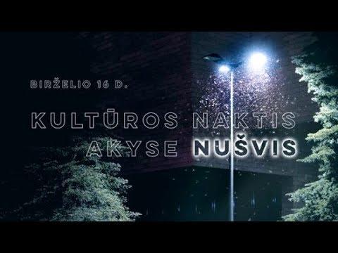 Vlogtage #1 Culture Night Vilnius