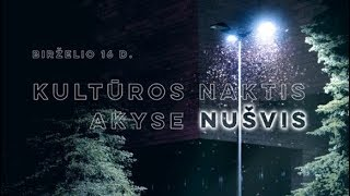 Vlogtage #1 Kultūros naktis