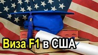 Учебные визы в США F1 и M1.Гранты на бесплатное обучение Русская Америка