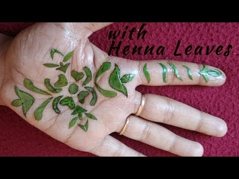 Mehndi Design With Henna Leaves For Hand Henna Leaves Natural