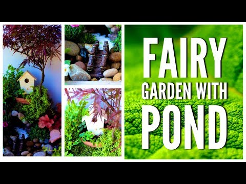How to make a Fairy Garden with water feature