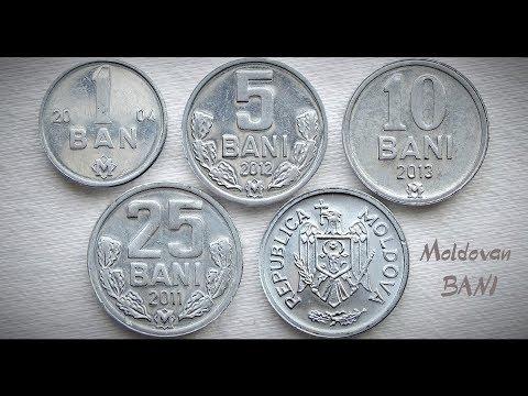 Moldovan BANI Coin collection | Moldova - Europe