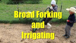 Broad Forking and Irrigating the Chicken Gardern