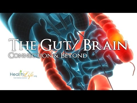 """The Gut/ Brain Connection"" Gut/ Brain Series (Part 4 of 4)"