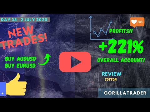 Day 38 | NEW TRADES! BUYS On AUDUSD, EURUSD | Review Cotton! | 2 Jul 2020