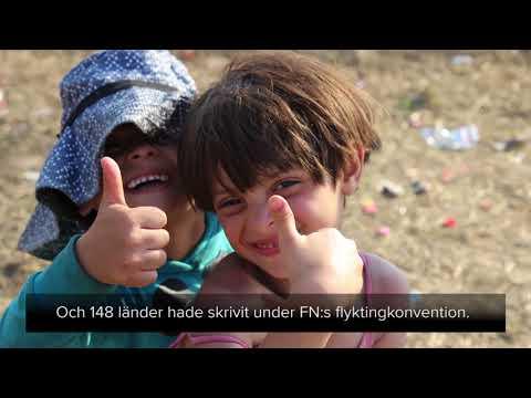 Det här är UNHCR