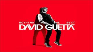 David Guetta - The Alphabeat [NOTHING BUT THE BEAT] 2011
