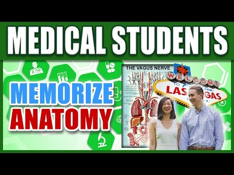 🔥 How to Memorize Human Anatomy w/ Medical Students