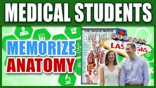 ? How to Memorize Human Anatomy w/ Medical Students | Memory Techniques for Med School Terminology