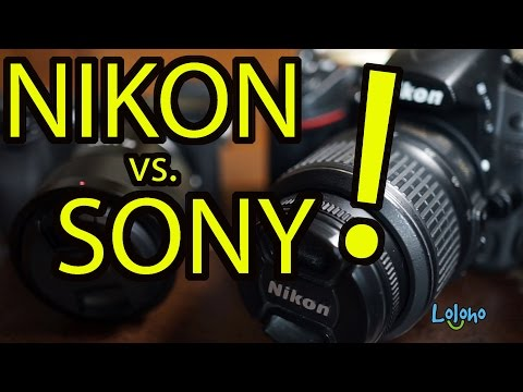 NIKON or SONY? Which Camera System is BEST for YOU?