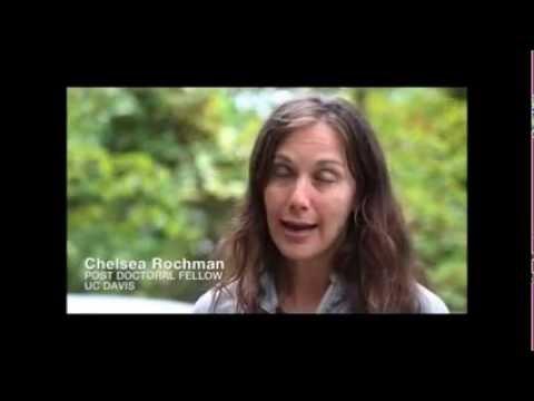 Cinch Power News: Water Pollution