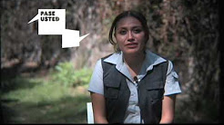 Martha Lidia Cruz. Abusamos del diclofenaco