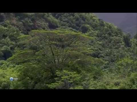 Маркизские острова - райский уголок. Marquesas Islands - paradise