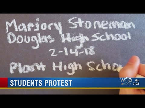Plant High student produces tribute video for Stoneman Douglas High School