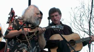 David Grisman Bluegrass Experience -
