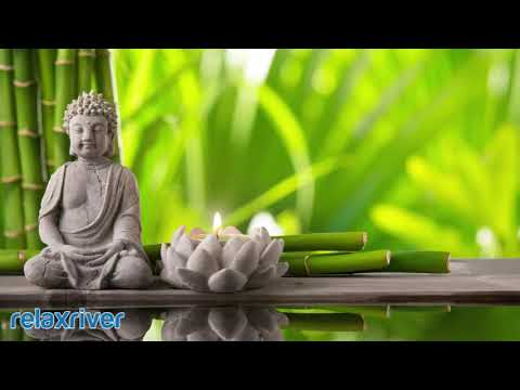 Buddhist Meditation Music: Holistic Music, Calming Buddhist