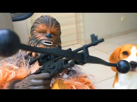 Funny Dogs VS Talking Chewbacca Toy!
