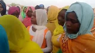 طرب  سودان  في الحلاوين