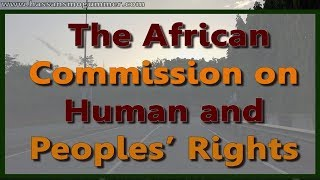 The  African Commission on Human and Peoples' Rights.