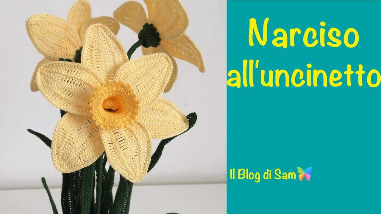 Spiegazione Del Narciso Alluncinetto By Sam